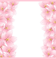 Sakura cherry blossom border vector