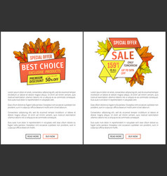 special exclusive offer buy poster with oak leaves vector image