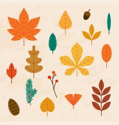 autumn leaves set flat design modern vector image vector image