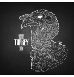 turkey head vector image