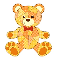 Application bear isolated vector image