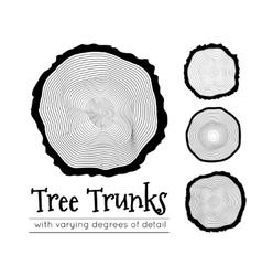 Cross section trunk vector