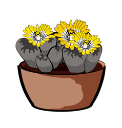 flowering plant in a clay pot element of home vector image