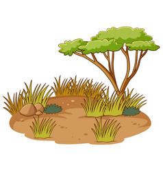 Isolated african forest scene vector