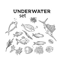 Ocean animals underwater sketch monochrome fish vector