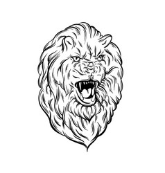 realistic lion made in hand sketched style hand vector image