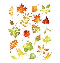 Set autumn leaves vector