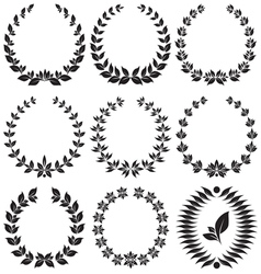 Set laurel wreath vector image