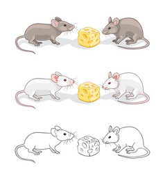 two mice with a piece cheese vector image