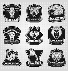vintage team sport logos collection vector image