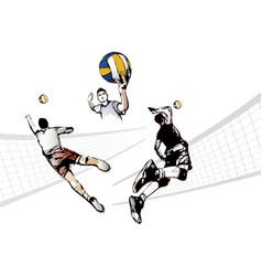 Volleyball trio vector