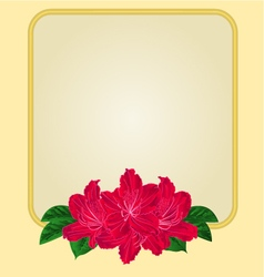 Golden frame with red rhododendron greeting card vector image