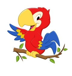 Cartoon Parrot vector image
