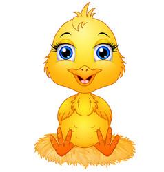 Cute cartoon baby chicken sitting a nest vector