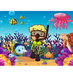 Diver and fish under the sea vector