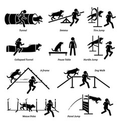 dog agility competition icons set agility vector image
