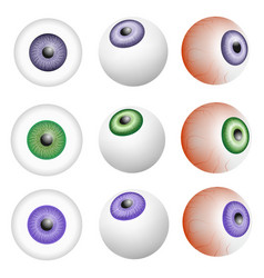 eye ball anatomy mockup set realistic style vector image