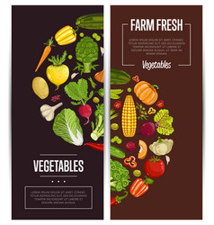 Fresh vegetable farming flyers set vector