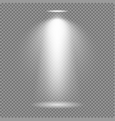 Light effect on transparent background bright vector