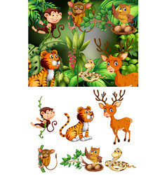 Many animals in forest vector