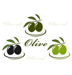 olive set vector image