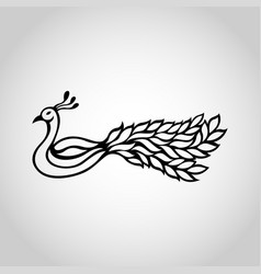 Peacock wing logo icon vector