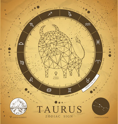witchcraft card with astrology taurus zodiac sign vector image