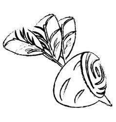 beet half food diet healthy sketch vector image vector image