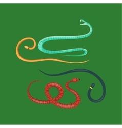 Snake reptile cartoon set vector