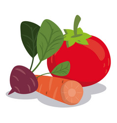 organic healthy food vegetables nutrition image vector image vector image
