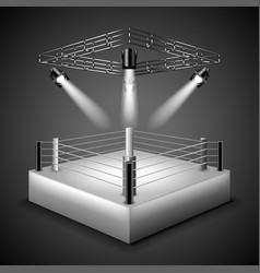 boxing ring background vector image vector image