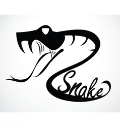 snake C vector image vector image