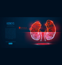 abstract silhouette polygonal organ kidney vector image