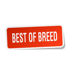 Best of breed square sticker on white vector