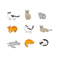 Cute cartoon cats of different breeds happy pets vector