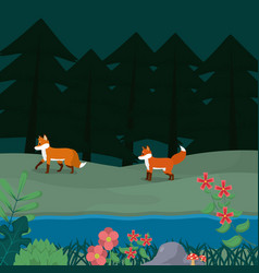 Foxes at forest cartoon vector