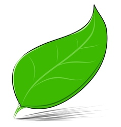 Green leaf isolated on white vector image