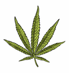 Marijuana leaf vintage black engraving vector