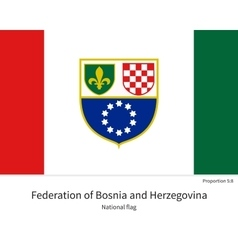 National flag of Bosnia and Herzegovina with vector image