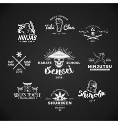 set ninjutsu logo sensei skull t-shirt vector image