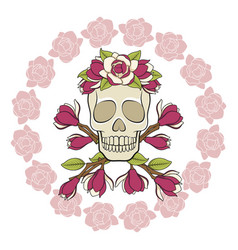 skull in a wreath magnolia with a frame vector image
