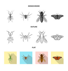 Isolated object of insect and fly icon set of vector