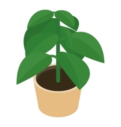 Isometric flower in a pot vector image