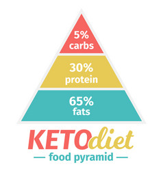 Ketogenic diet food pyramid vector