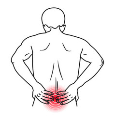 Low back pain bone and muscle backache vector