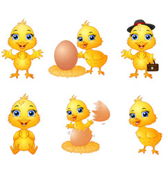 set of cute cartoon baby chick vector image