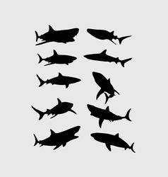 Shark Silhouettes vector
