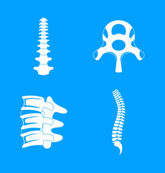 spine orthopedic vertebra icons set simple style vector image