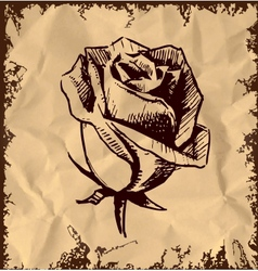 Vintage rose bud sketch vector image