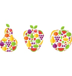 fruit forms with fruits template vector image vector image